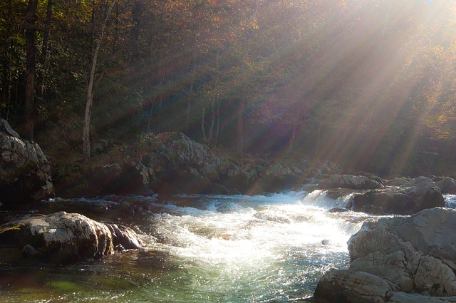 river-1232443_640